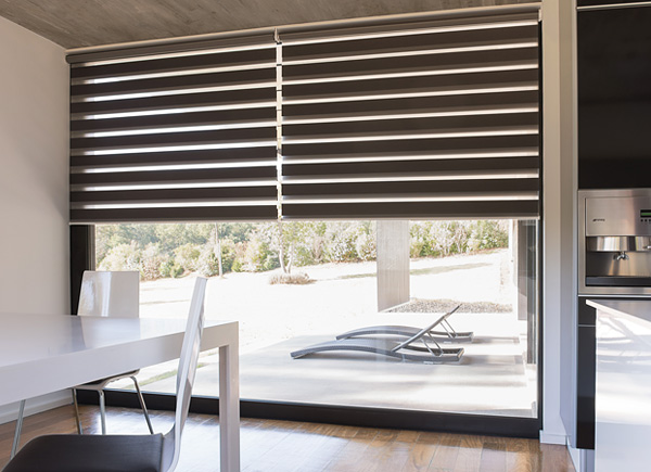 Double Roller Shades : Roller shades and blinds order free swatches