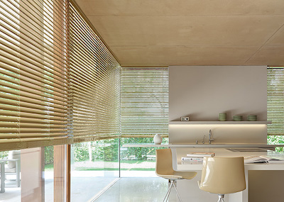 """2"""" Metal Blinds, Color: Champagne"""