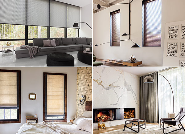all window treatments