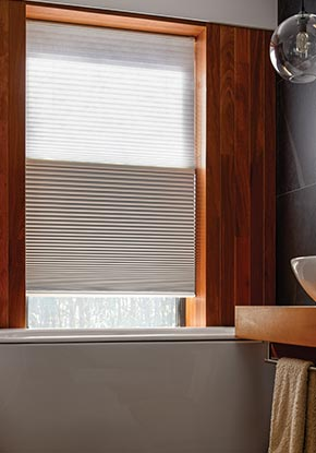 Day & Night Cellular Shades